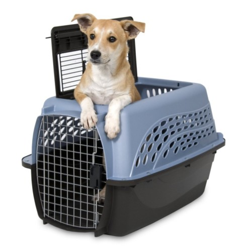 best-plastic-dog-crate