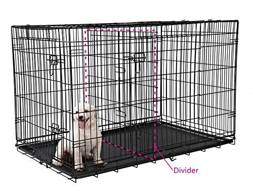dog-crate-with-divider