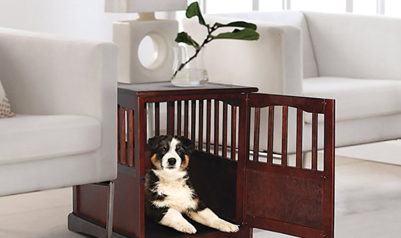 The Comprehensive Guide to Buying the Best Dog Crate