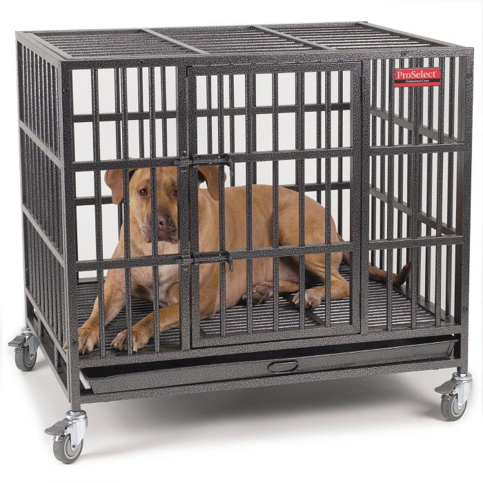 Heavy Duty Metal Dog Crate Review All Pet Cages
