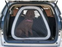 How to Choose the Best Dog Crate for Car