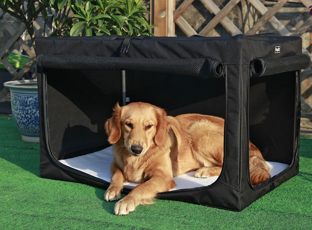 Collapsible Dog Crate All Pet Cages