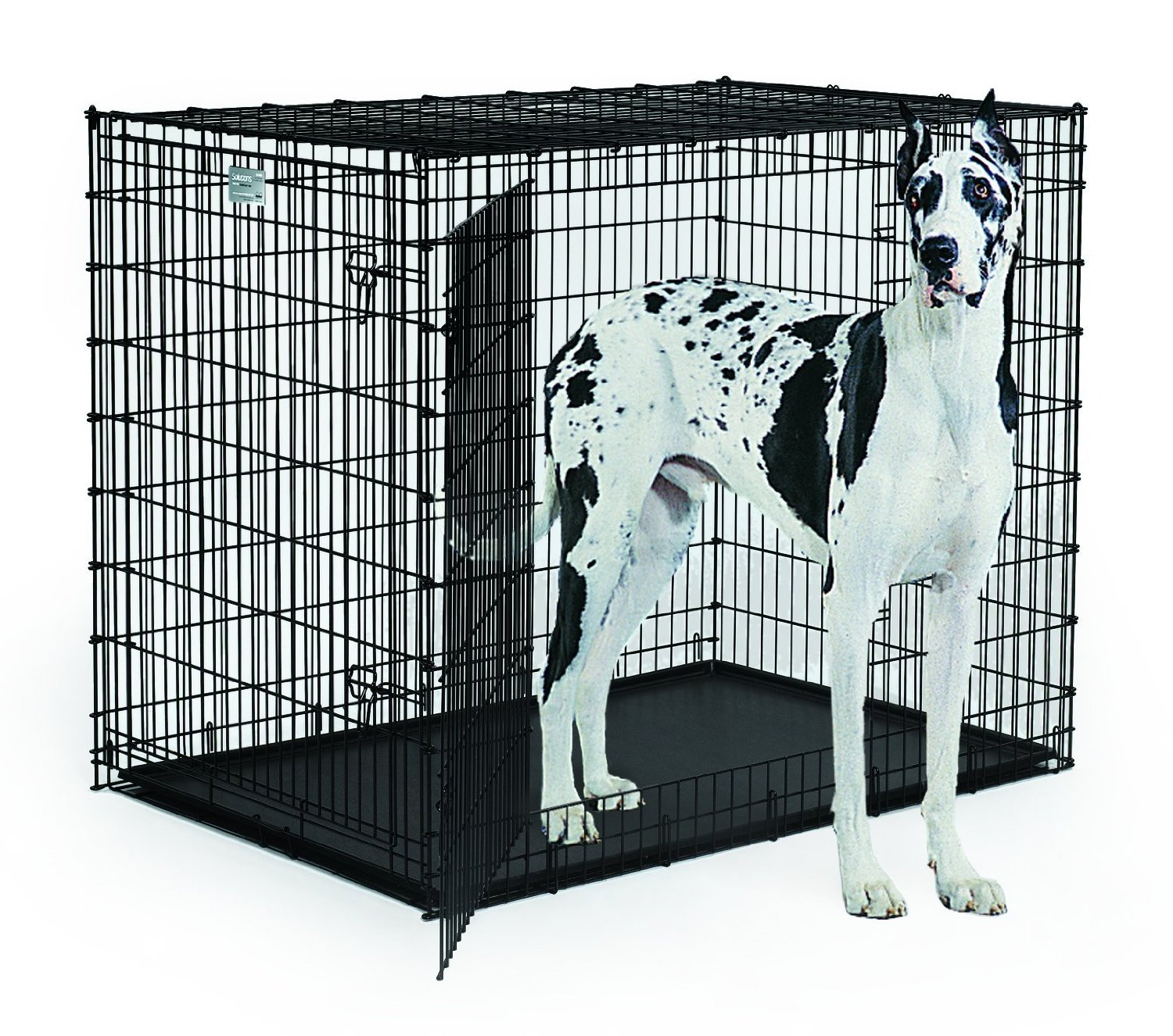 which xxl dog crate to buy