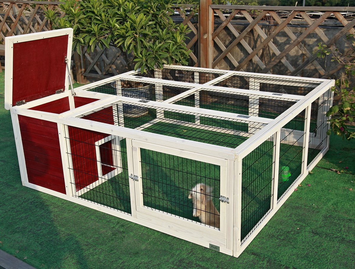 largest rabbit cages review all pet cages. Black Bedroom Furniture Sets. Home Design Ideas