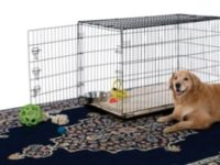 Largest Dog Crates Review