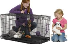 Make Cleaning Easy – Rabbit Cage with Pull Out Tray