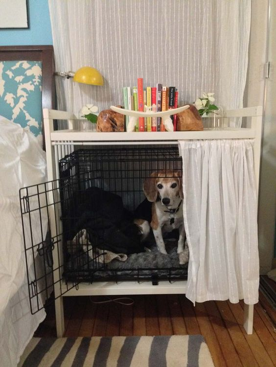 Everything You Need To Know About Dogs And Cages All Pet