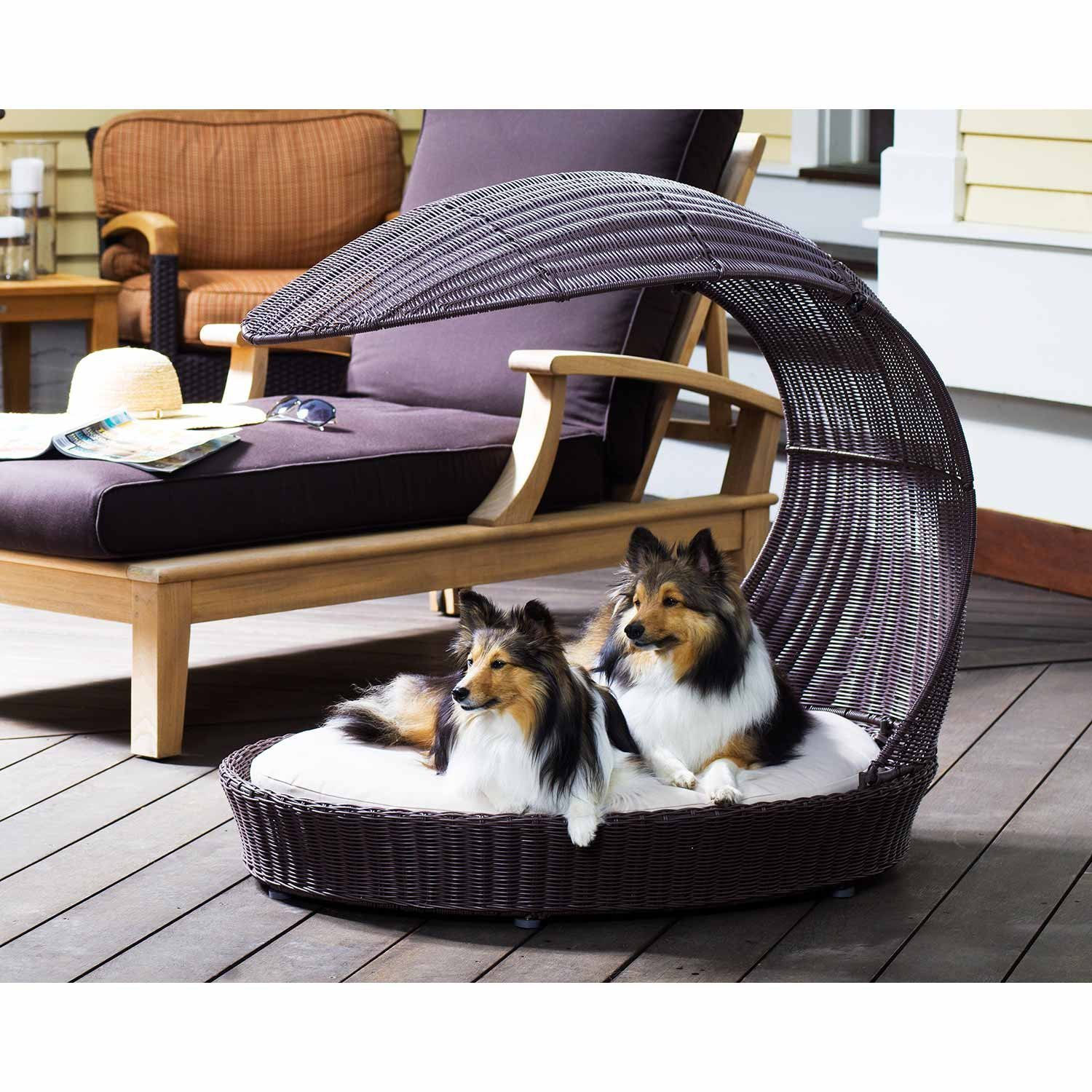 It Can Sometimes Be Hard To Look For A Nice Piece Of Pet Furniture For Big  Dogs, But There Is A Dog Bed From The Refined Canine That Large Breed Owners  Can ...