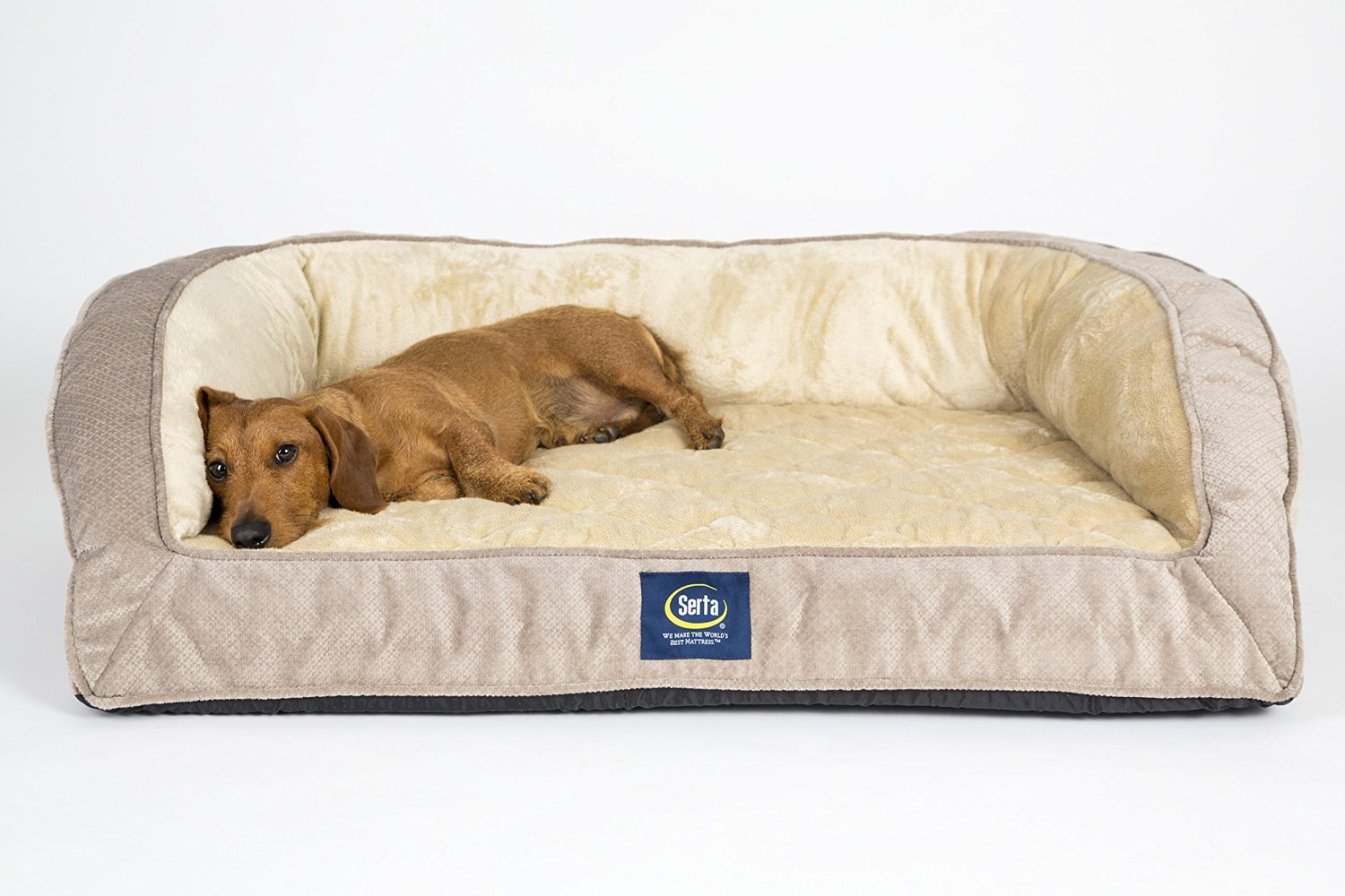 Big Dog Beds Walmart Memory Foam Pet Bed For Large Dogs