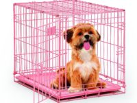 The Perfect Pink Dog Crate