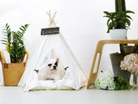 Dog Teepee Tent – Keep Your Dog Comfortable & Stylish!