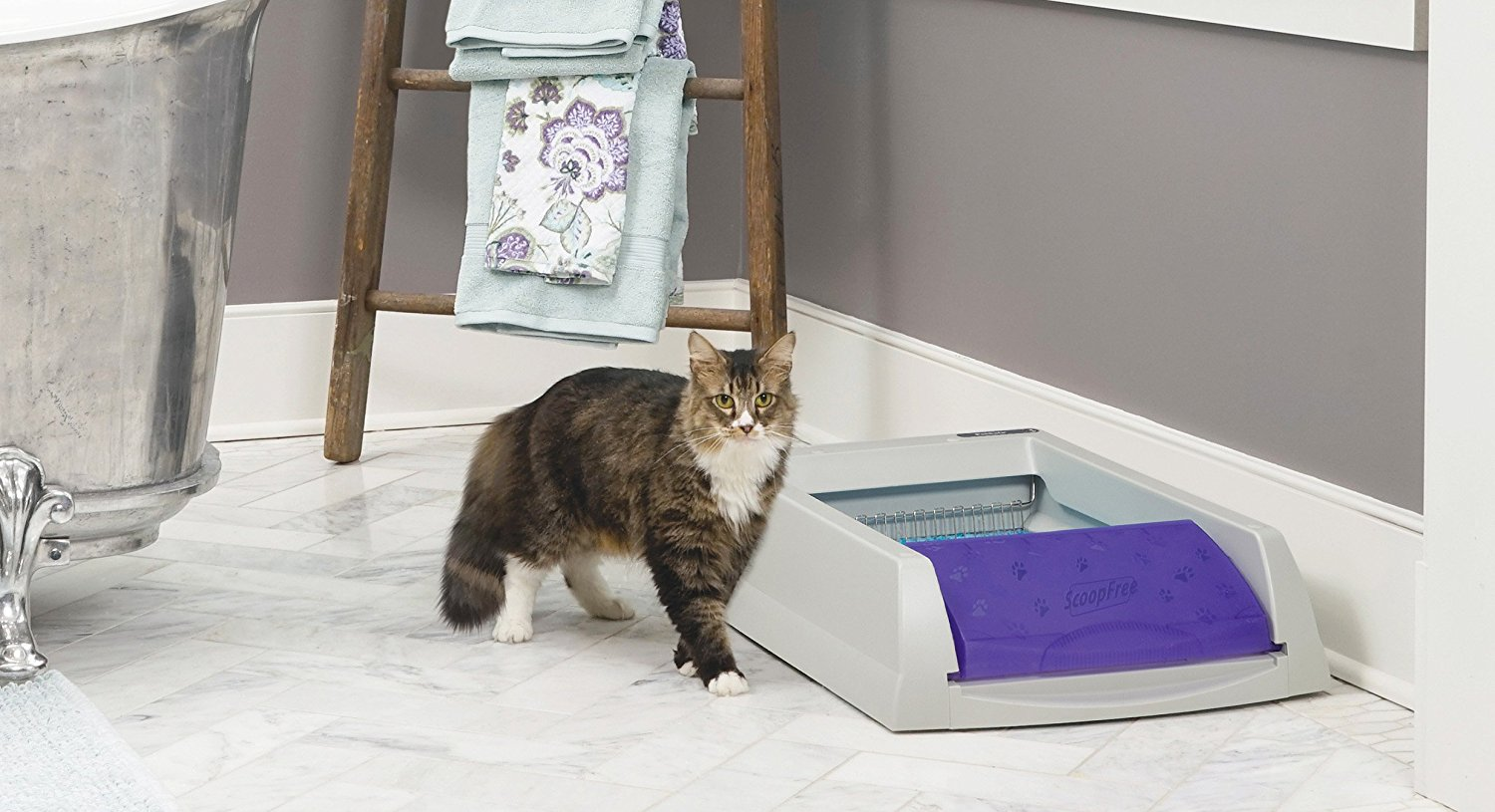 Cat Litter Box That Gives Convenience All Pet Cages