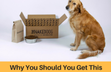 The Naked Dog Box Review – Why Should You Get This Gluten-Free Premium Dog Food?