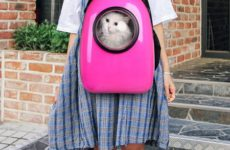 Cat Backpack with Bubble Window: The Innovative Way to Travel with Your Cat