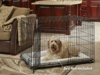 Folding Dog Crate: Convenience for You, Safety and Security for Your Pet