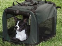 Portable Dog Crate: Your Good Helper When Traveling With Your Pet