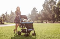 Heavy Duty Dog Strollers For Large / Multiple Dogs