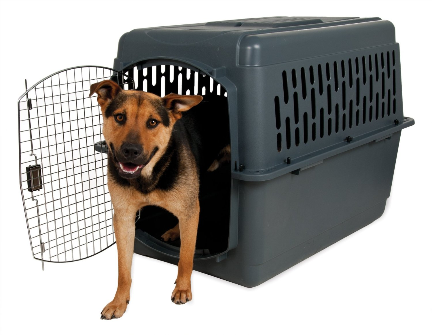 Large Dog Airline Kennel