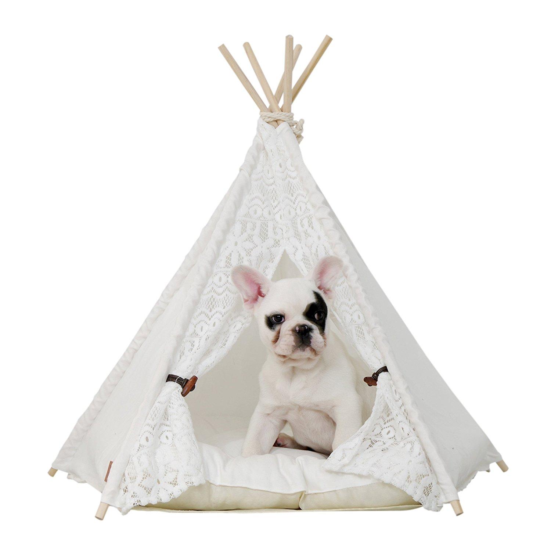 Cotton Canvas Dog Beds