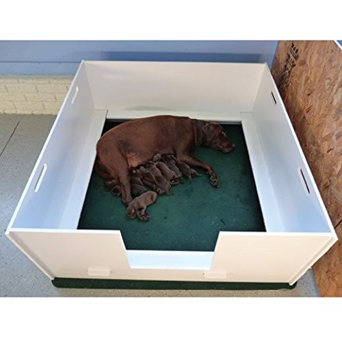 Whelping Box For Dogs All Pet Cages
